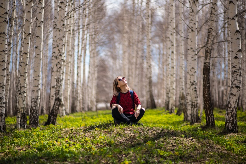 Woman Sitting Between Brown Trees