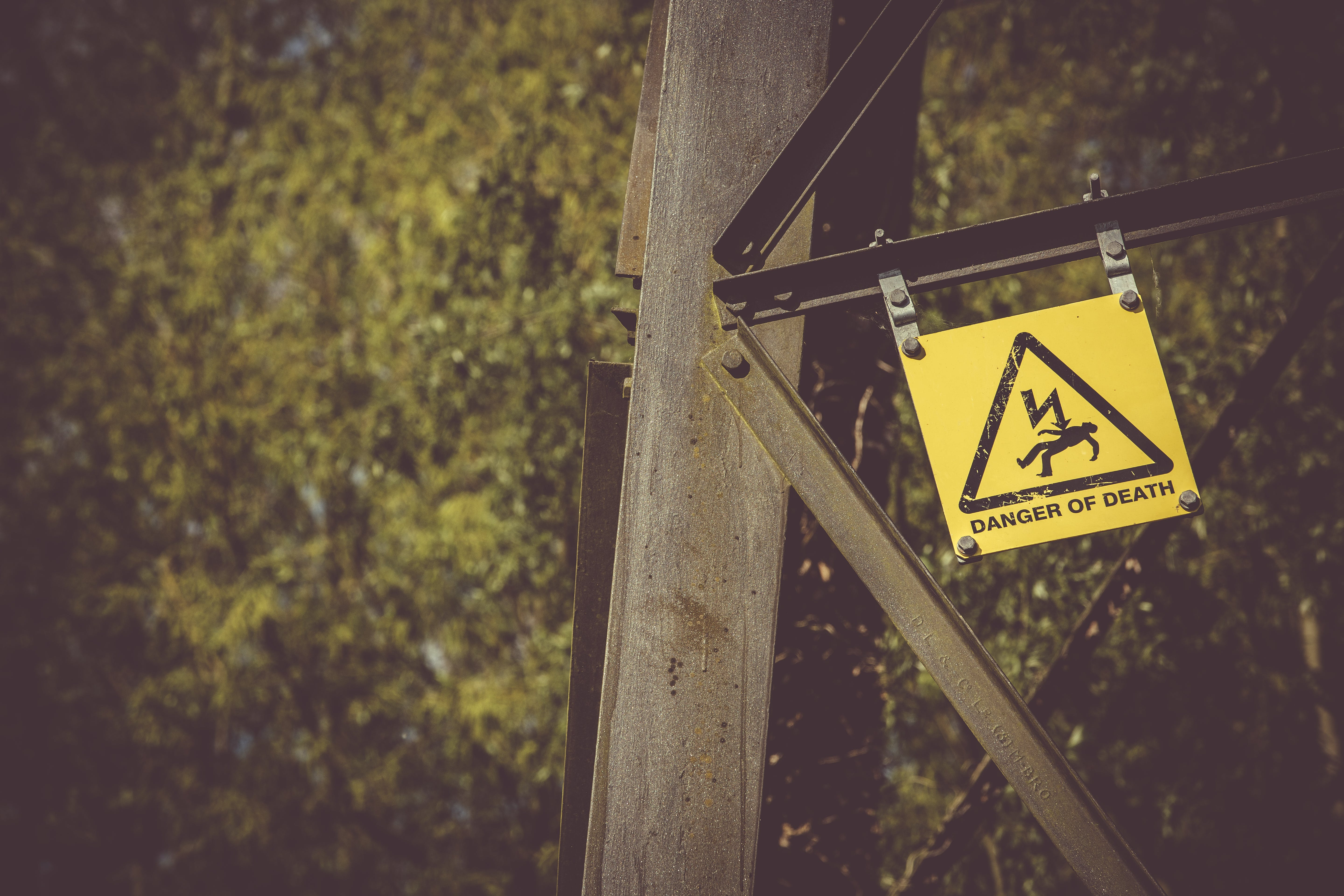 Free stock photo of danger, death, nature, warning sign