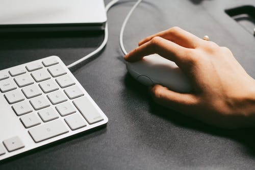 Person Holding Computer Mouse