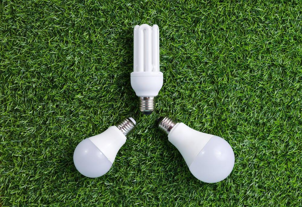 картинка лампочка в траве выполнения разгибаний