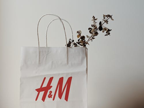 White Paper Bag With Plant Inside