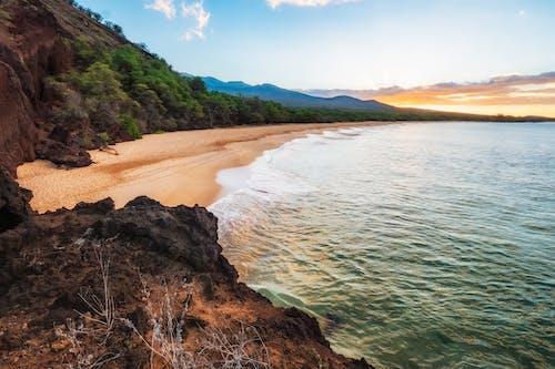 Δωρεάν στοκ φωτογραφιών με mahi, maui, ακτή, άμμος