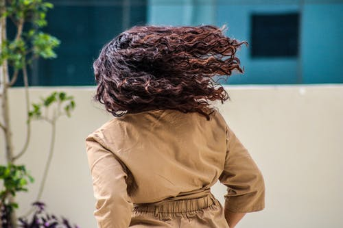 Free stock photo of afro hair, curly hairs, dry hair, hair