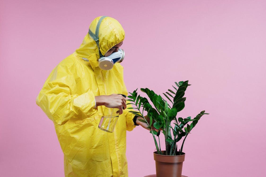 Základová fotografie zdarma na téma bezpečnost, bezpečný, chřipka