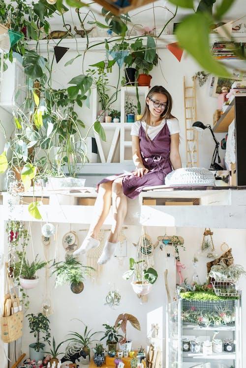 Základová fotografie zdarma na téma apartmán, atraktivní, brýle, chlad