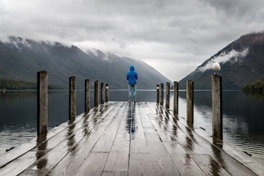 Foto de archivo libre de frío, madera, amanecer, paisaje