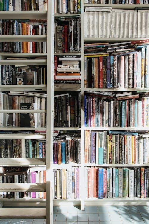 Kostenloses Stock Foto zu bibliothek, bücher, bücherregal