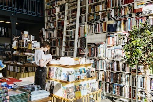 도서관, 독서하는, 사람의 무료 스톡 사진