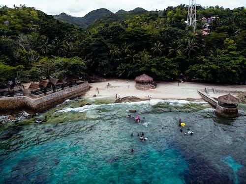 Free stock photo of beach, blue, green