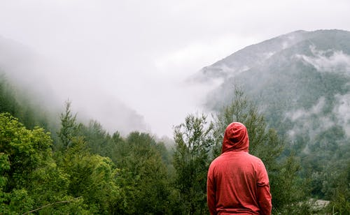 Person Wearing Red Hoodie Standing Near Trees With Mountain at Distance