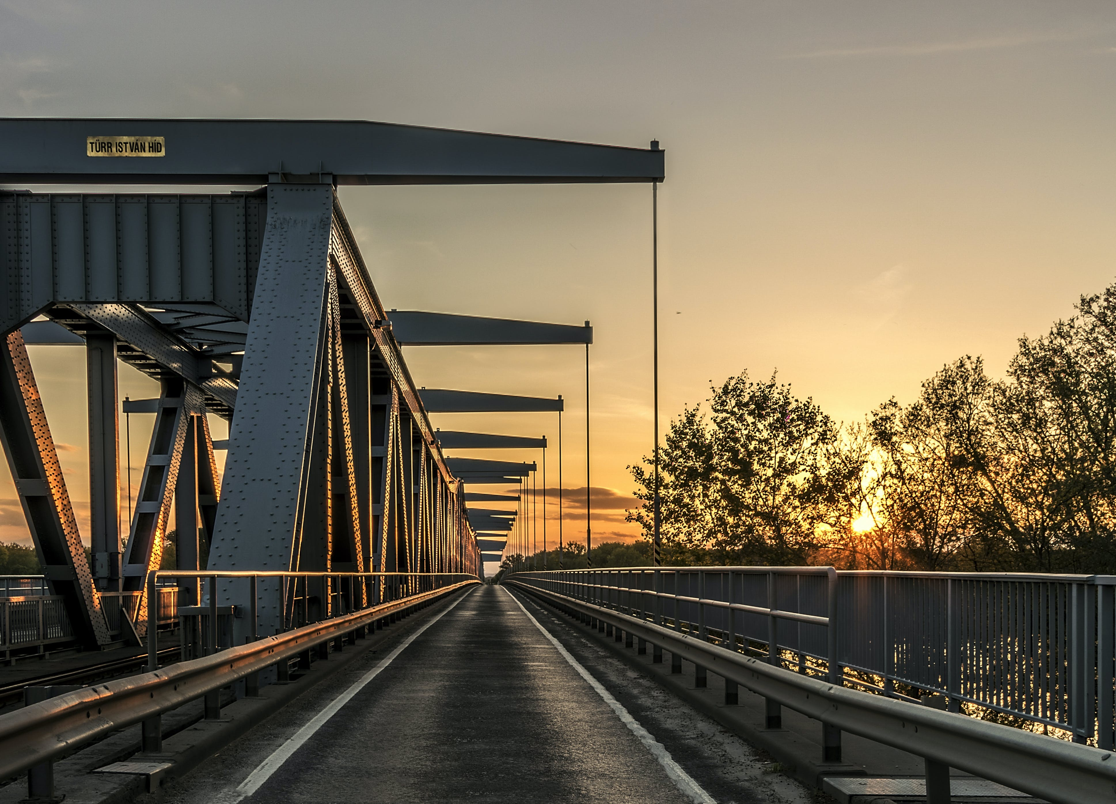 Gray and Black Bridge Near Trees during Sunset