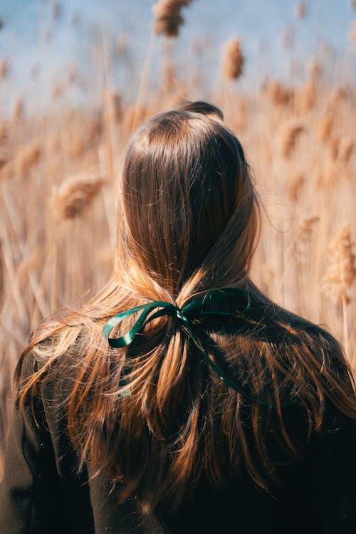 Fotos de stock gratuitas de campo, césped, hierba, mujer
