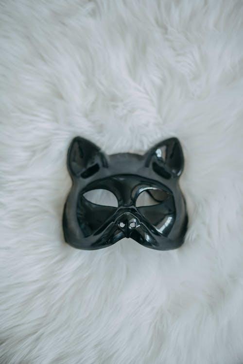 Fotos de stock gratuitas de animal, carnaval, disfraz, disfraz cara