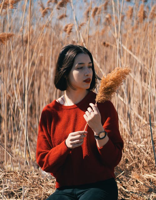 Woman In Red Sweater Holding Brown Grass