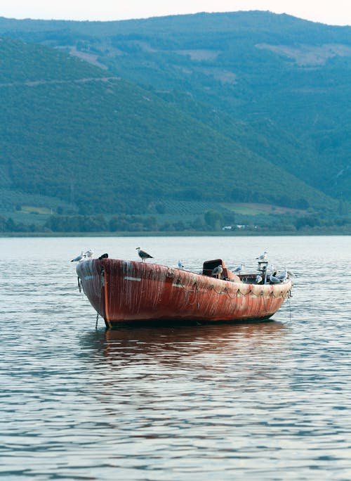 Rusty Boat On Body Of Water