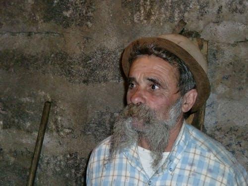 Fotos de stock gratuitas de anciano, antiguo, barba