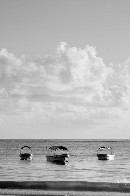岸邊, 水上技能, 海, 海洋 的 免費圖庫相片