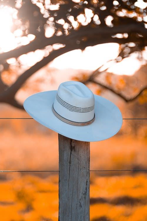 White Fedora Hat On A Fence