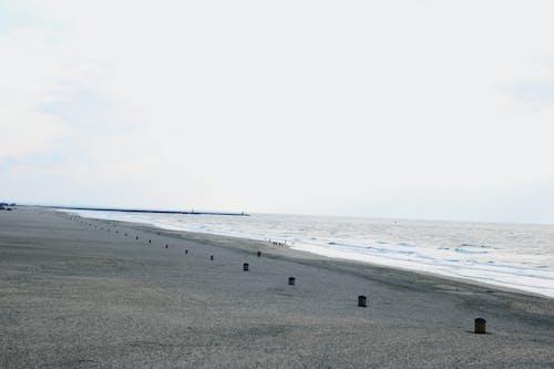 斯海弗寧恩, 沙海灘, 海 的 免費圖庫相片