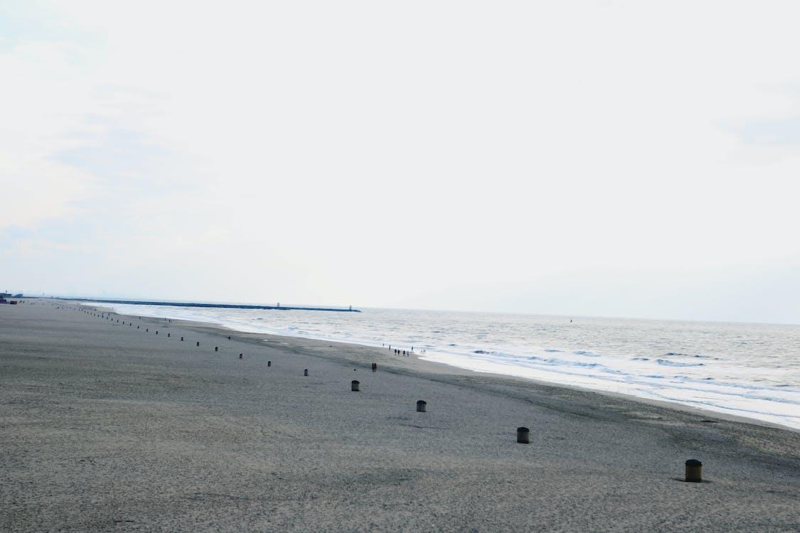 Free stock photo of beach, holland, netherlands