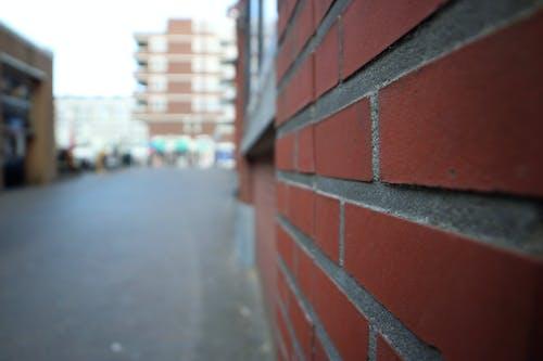 斯海弗寧恩, 石, 磚牆 的 免費圖庫相片