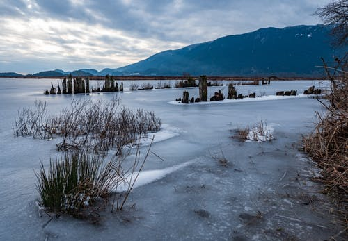 Δωρεάν στοκ φωτογραφιών με pitt meadows, pitt λίμνη, pitt περιοχή διαχείρισης άγριας φύσης, Άνθρωποι