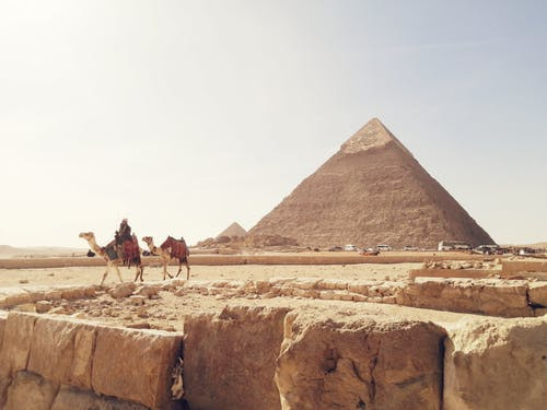 Person, Die Ein Kamel Reitet