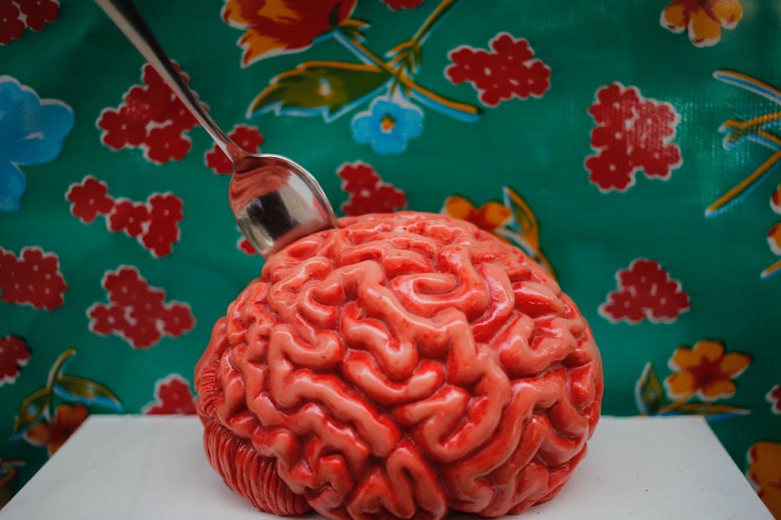arte, cérebro, escultura