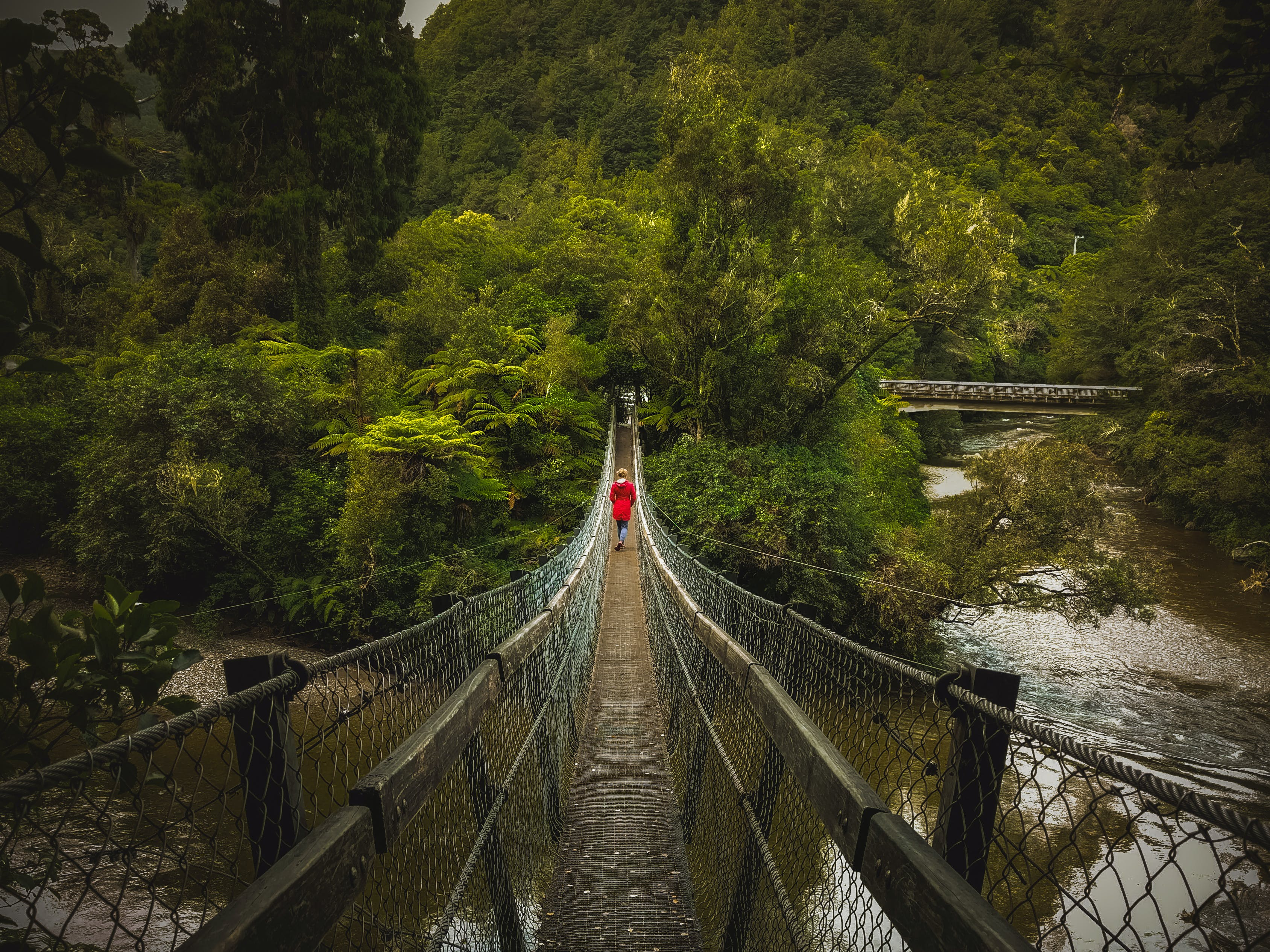 Person Walking on Hanging Bridges