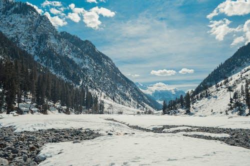 Fotobanka sbezplatnými fotkami na tému chladný, hora, krajina
