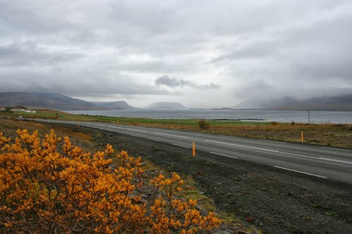 Free stock photo of iceland, nature, road