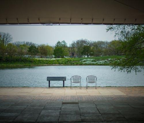 いす, スペース, 外を見る, 庭園の無料の写真素材
