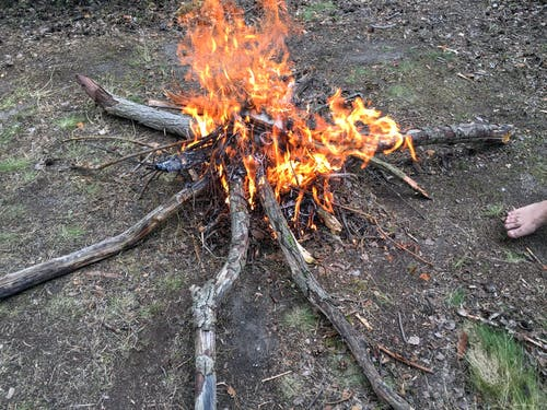 모닥불의 무료 스톡 사진