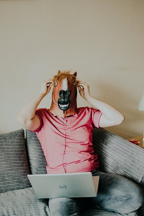 Man Wearing A Horse Mask