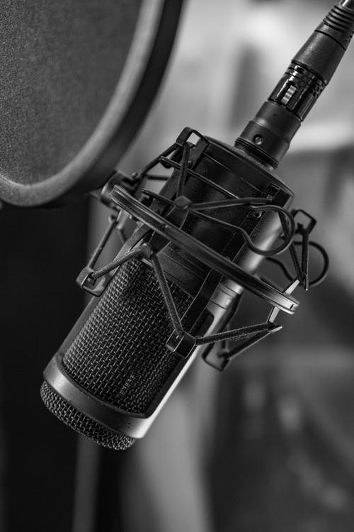 Black and White Photograph of Microphone on Microphone Stand