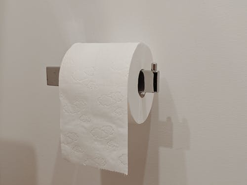 White Toilet Paper Roll on Toilet Paper Holder