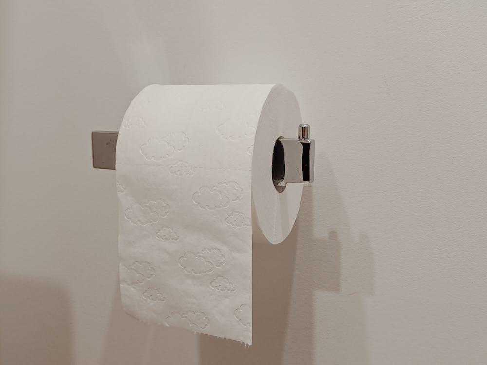 White Toilet Paper Roll on Toilet Paper Holder