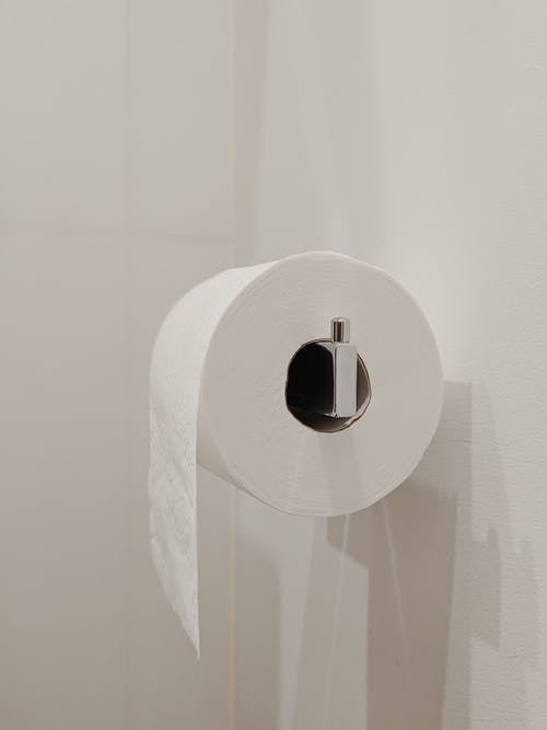 White Toilet Paper Roll on Silver Holder