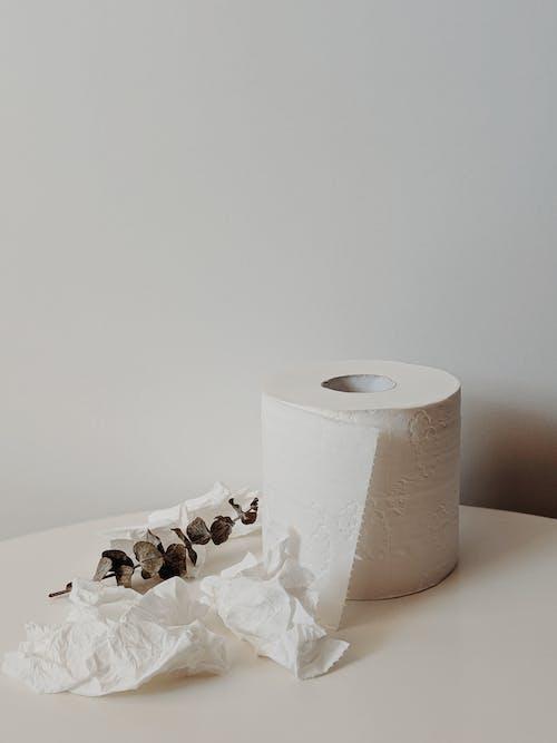 คลังภาพถ่ายฟรี ของ กระดาษ, กระดาษชำระ, การถ่ายภาพหุ่นนิ่ง