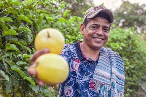 Fotos de stock gratuitas de agricultura, colombia, comida