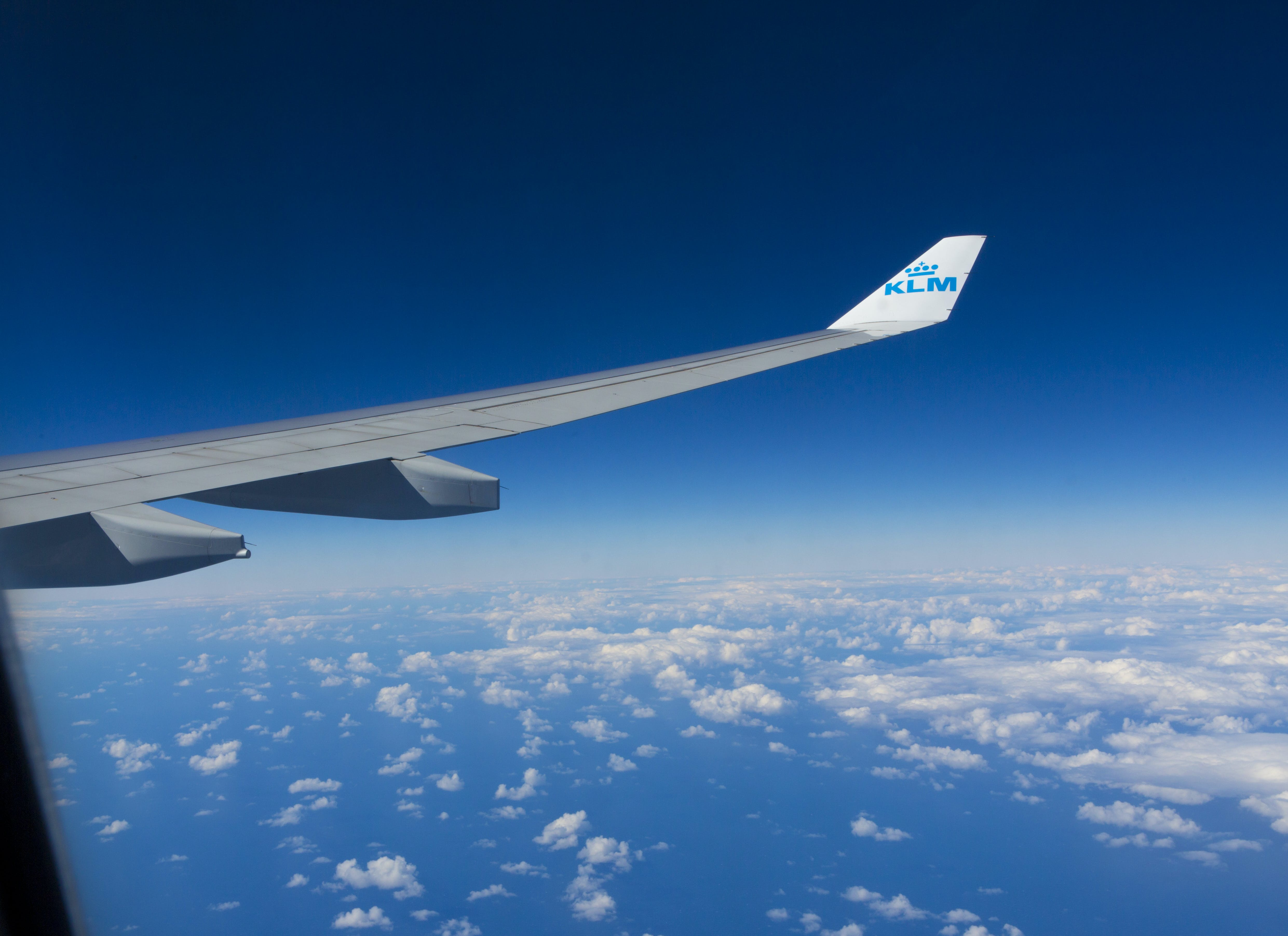 Free stock photo of aircraft wing, klm