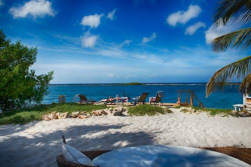 Immagine gratuita di aruba, coral reef beach 2016