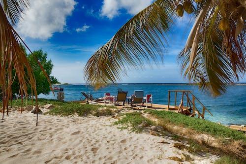 Foto d'estoc gratuïta de platja d'esculls de corall
