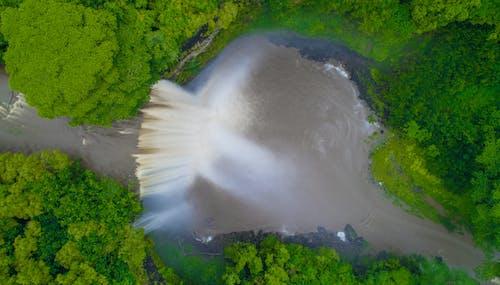 Free stock photo of hawaii, nature, river