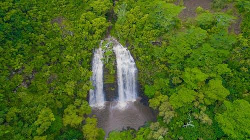 Free stock photo of hawaii, nature, waterfall