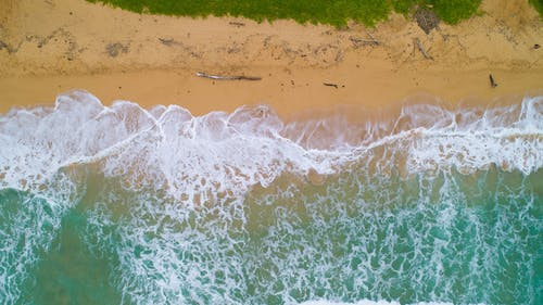 Free stock photo of beach, hawaii