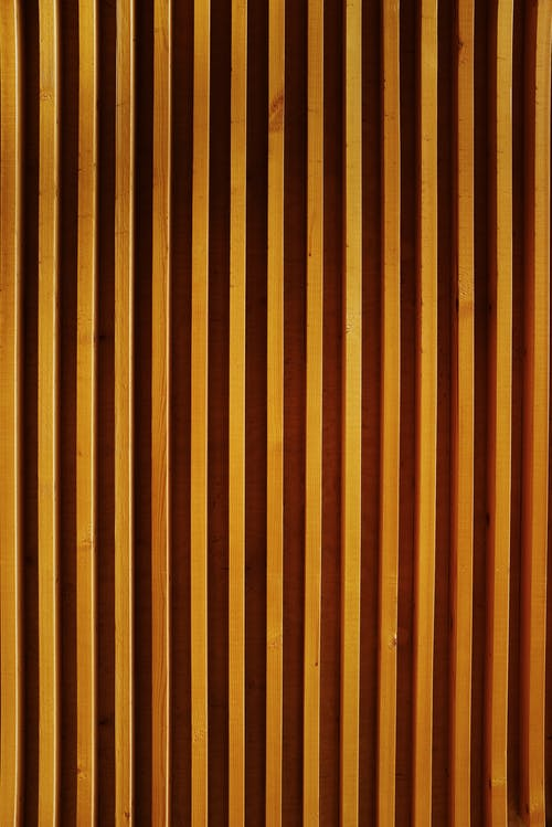 Wooden planks on wall in modern building