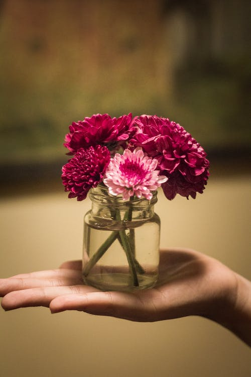 Gratis lagerfoto af årgang, kaffe, Pige, smukke blomster