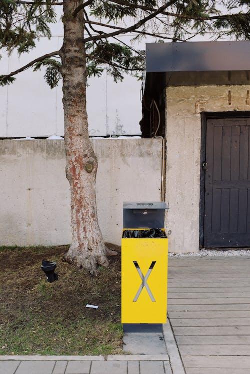Kostenloses Stock Foto zu baum, betonmauer, container