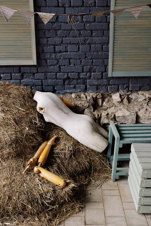 White Mannequin on Brown Hay